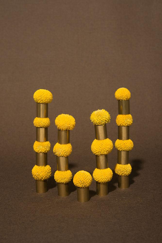 molecule 4 image