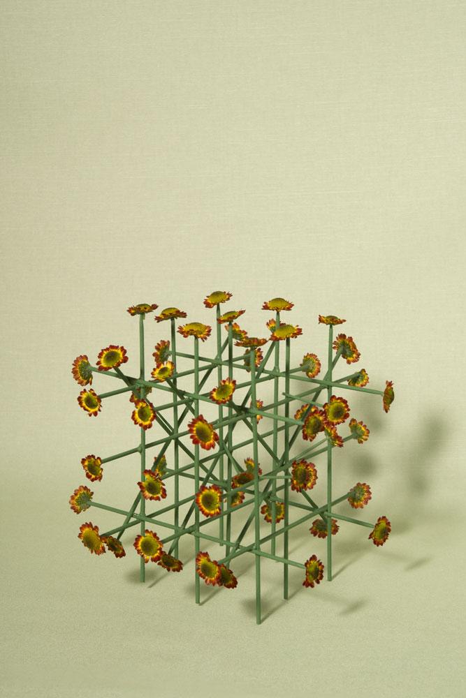 molecule 7 image
