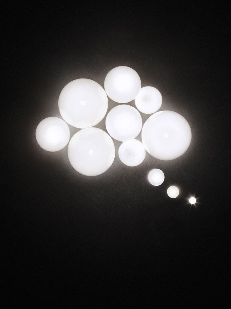 bulbs image