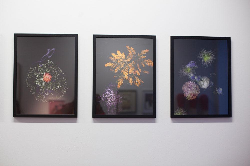 Sarah Illenberger image #18