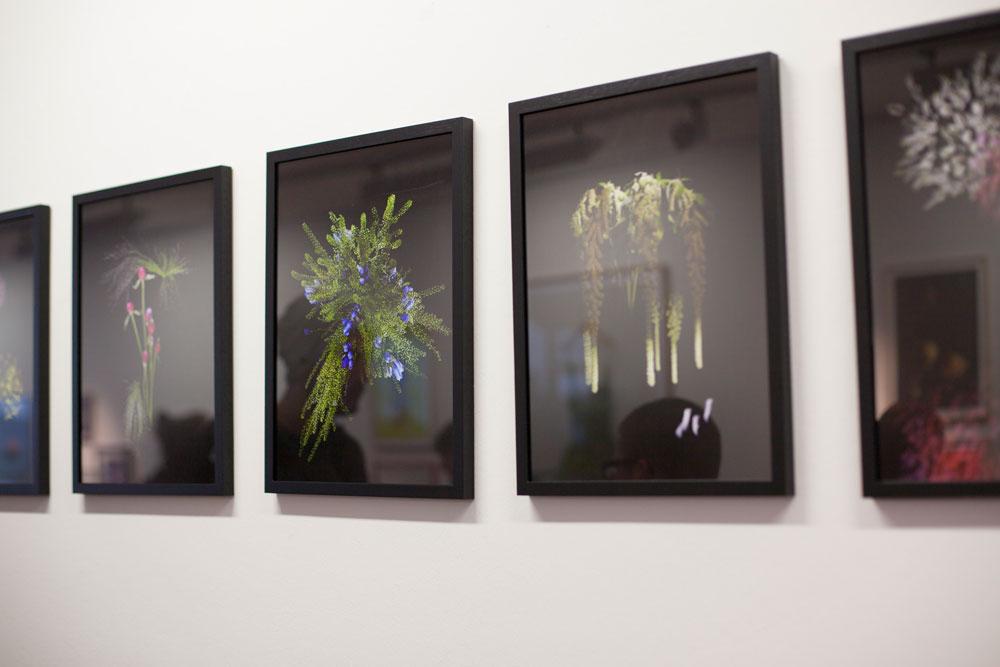 Sarah Illenberger image #19
