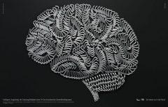 EVOLUTION 2 thumbnail